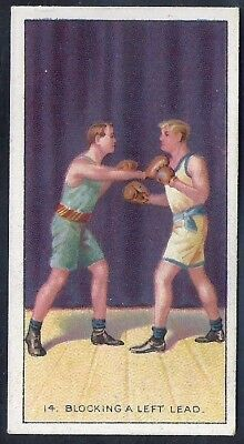 Carreras-The Science Of Boxing Series (Black Cat Back)-#14- Quality Card!!!