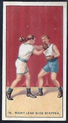 Carreras-The Science Of Boxing Series (Black Cat Back)-#16- Quality Card!!!