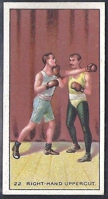 Carreras-The Science Of Boxing Series (Black Cat Back)-#22- Quality Card!!!