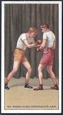 Carreras-The Science Of Boxing Series (Carreras Back)-#43- Quality Card!!!