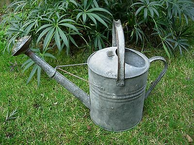 Vintage 2 Gallon Galvanised  Metal Watering Can with Copper Rose (868)