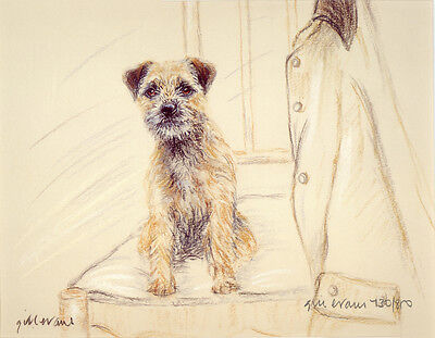 BORDER TERRIER DOG LIMITED EDITION PRINT - Signed Artist Proof - Numbered 45/85