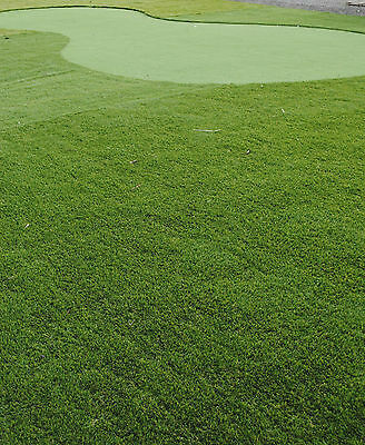 SYNTHETIC ARTIFICIAL FAKE GRASS TURF- PREMIUM DARK 40mm PILE HEIGHT