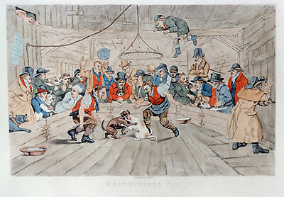 STAFFORDSHIRE BULL TERRIER PRINT ENGRAVING - DOG FIGHTING at THE WESTMINSTER PIT