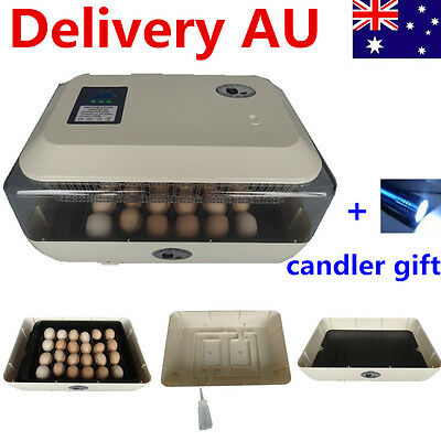 24 Egg Automatic Countdown Turning Incubator LED Digital Hatch Chicken Duck Eggs