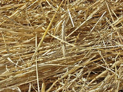 2x Barley Straw Logs  for  Safe Natural Control of Algae & Blanket-Weed in Ponds