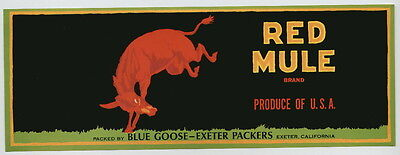 RED MULE Vintage Exeter CA Fruit Crate Label, ***AN ORIGINAL LABEL***