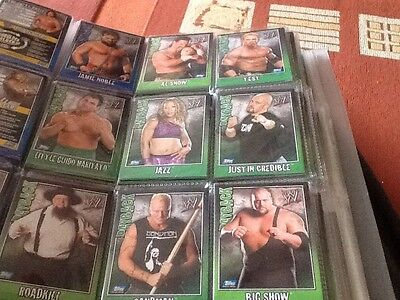 Topps Wwe Payback ECW  Set Of 24 Cards