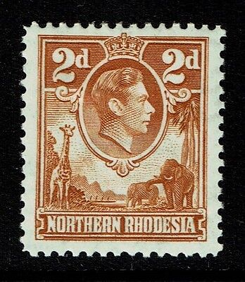 Northern Rhodesia SG 31, perf 12.5, Mint Hinged - Lot 111316