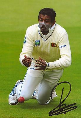SRI LANKA: FARVEEZ MAHAROOF SIGNED 6x4 TEST ACTION PHOTO+COA