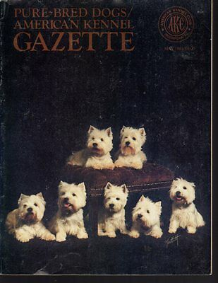 AKC American Kennel Gazette May 1984, West Highland White Terrier Cover