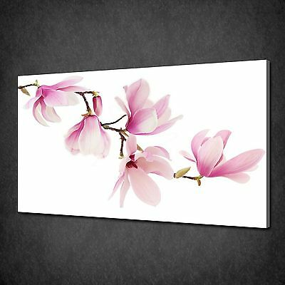 Beautiful Pink Magnolia Flowers Canvas Wall Art Print Picture Ready To Hang