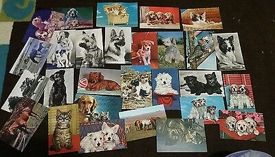 vintage postcards dogs cats animals