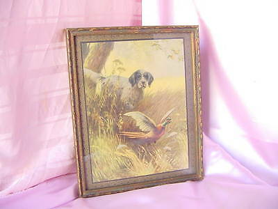 Vintage Calendar Print Hunting Bird Dog Irish Setter Nice Old Deco Frame Nr