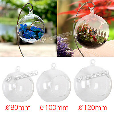 Succulent Style 6 X HANGING GLASS BAUBLE SPHERE BALL CANDLE Holder 3 size UK