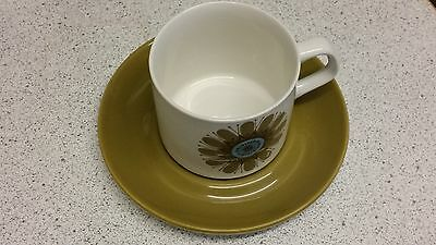 J&G Meakin Studio English Ironstone 49 piece dinner service Immaculate Condition