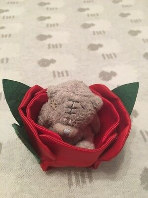 BN Tatty Teddy Me To You Bear In A Rose Soft Bear Brand New
