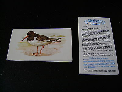 Grandee British Birds Collection Full Set By John Player & Sons