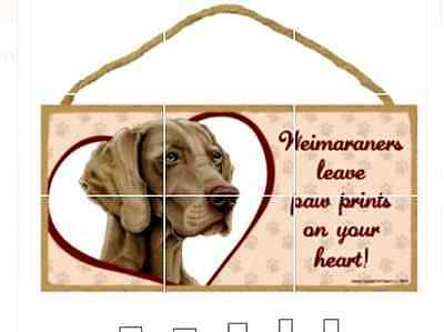 """""""Weimaraners leave paw prints on your heart!"""" 10"""" x 5"""" x 1/4"""" wooden sign"""