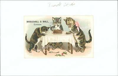 AKH-045 Antique Print Marshall & Ball Clothiers Kittens at Table Trade Card