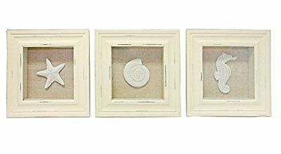 3 Sealife Shadow Box Seahorse Starfish Shell Decor Home Wall Mount Picture Frame