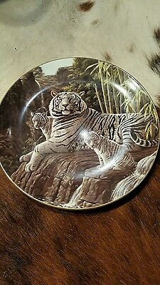 Wedgewood Collectable Plate Big Cats The White Tiger Compton & Woodhouse