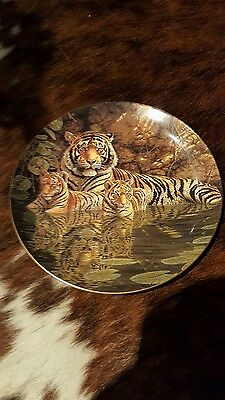 Wedgewood Collectors Plate Big Cats The Bengal Tigers Compton & Woodhouse