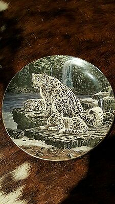 Wedgewood Collectors Plate Big Cats The Snow Leopards Compton & Woodhouse