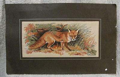 """VINTAGE 6""""x3"""" EMBROIDERED CASHS SILK PICTURE OF A FOX IN UNDERGROWTH"""