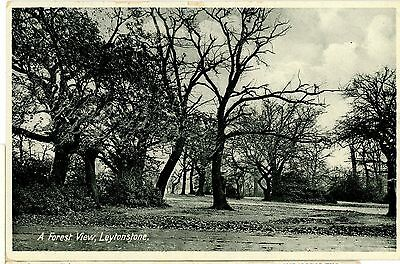 Essex,leytonstone-Forest View.london.rp-Postcard.posted ,ex93