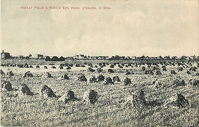 A Bird's Eye View of A Wheat Field & Ipswich SD In The Distance 1910