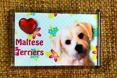 Maltese Terrier Gift Dog Fridge Magnet 77x51mm Free UK Post Birthday Gift