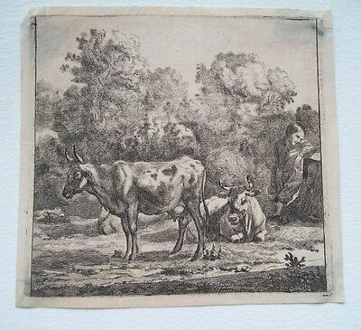 SPECULATIVE 18th CENTURY OLD MASTER ETCHING - CATTLE AND BOY