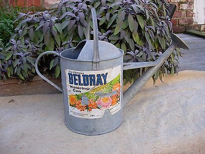 Vintage 2 Gallon Galvanised Beldray Watering Can Copper Rose Original Label (956