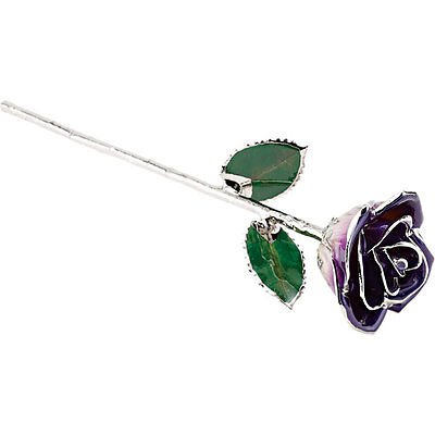 """Real Lacquered 12"""" inch Purple Rose W Platinum Trim FREE Shipping New Gift Box"""