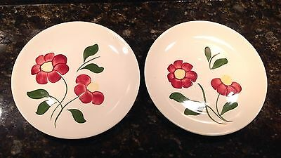 """Southern Potteries 9-1/2"""" Plates, Flowers Lot of 2"""