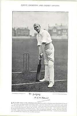 1895 Cricket GREGORY, S E, Australia : PALAIRET, R C N, Somersetshire