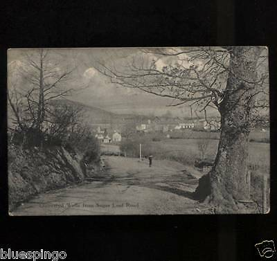 Sugar Loaf Road Llanwrtyd Wells  Postcard 1913