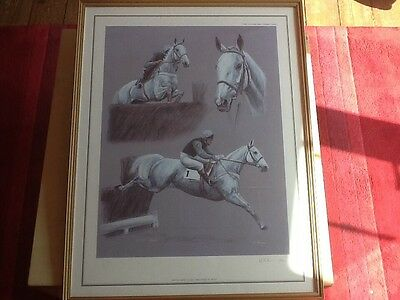 Desert Orchid limited edition print