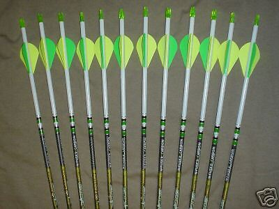 Easton Axis 400 Hunting Carbon Arrows! Crested/Dipped Bohning Blazer Vanes
