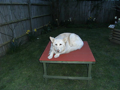 Dog Agility Training Ohedience Equipment Pause Table