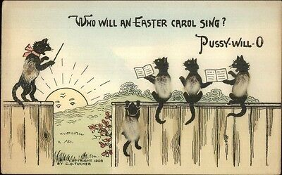 Black Kitty Cats Orchestra on Fence Pussy Will-o Add-On Novelty Postcard