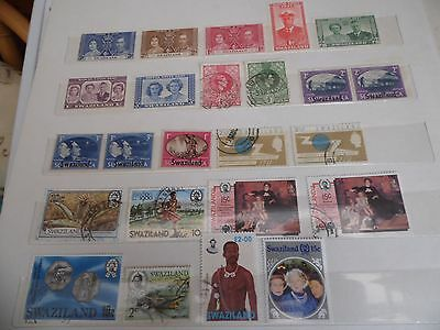 swaziland mainly used selection with odd mint