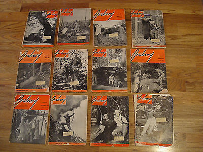 1954 Archery Magazines, All 12 Issues,