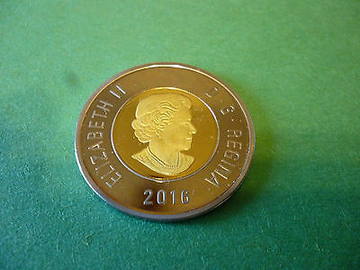 2016 Canada, Toonie, Proof Frosted, Heavy Cameo, $2 Dollars.