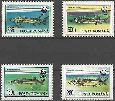 Timbres POISSONS Roumanie 4200/3 ** (2872)