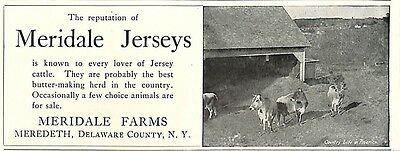 1904 Meridale Farms Jersey Cattle Ad Meredeth Ny New York Delaware County