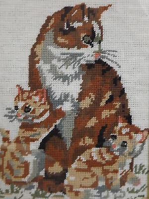 VINTAGE CAT&KITTENS Tapestry/Completed Wool Needlepoint.EXCELLENT