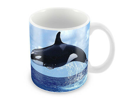 Killer Whale  Coffee Mug Free Personalisation   Orca