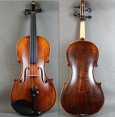 Popular  Solid Wood - Beautiful Advanced 4/4 Violin Outfit / Standard Case & Bow